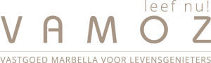 final full logo vamoz